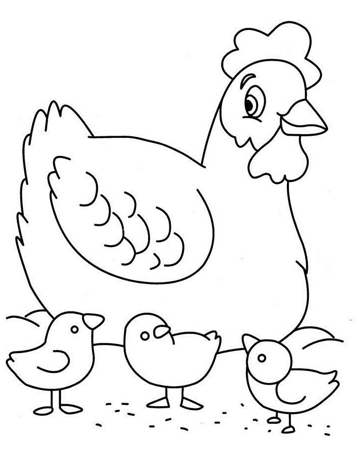 715x927 Chicken Keeping Small Children Chickens Kids Net