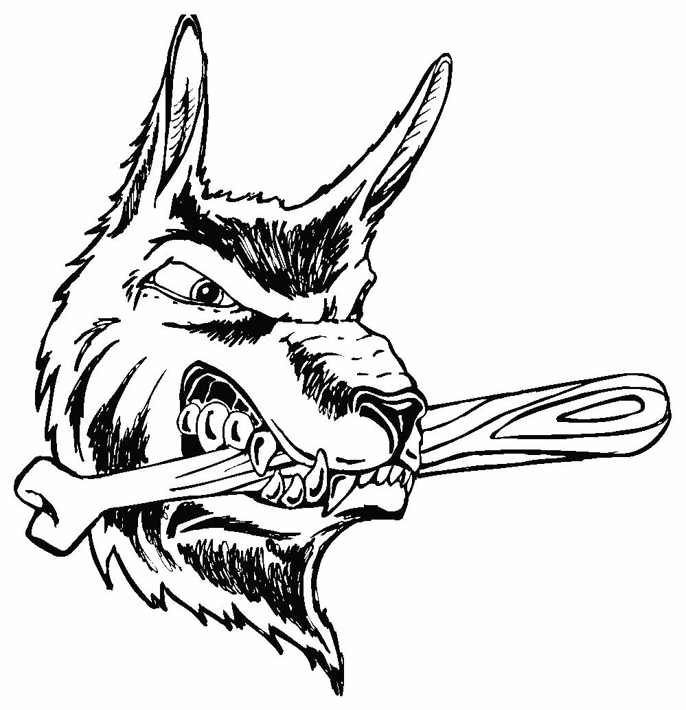 999x1033 Coyote