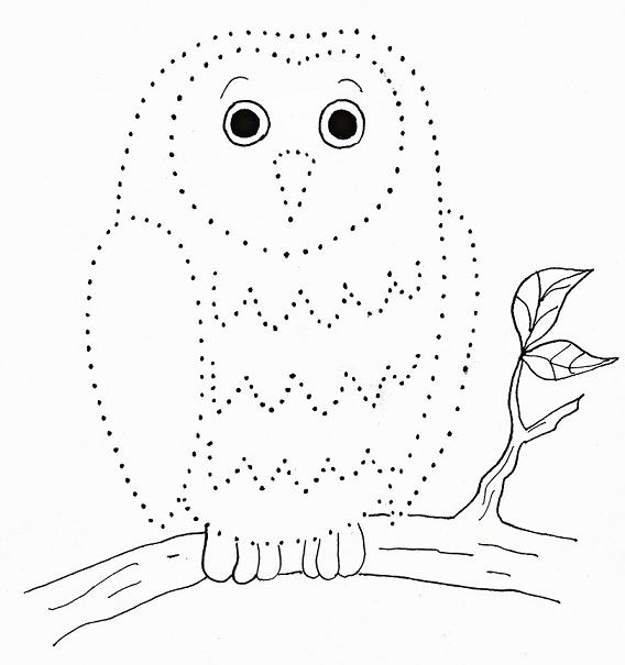 568x605 Owl Dot Drawing