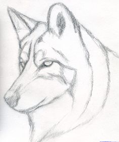 236x281 Simple Wolf Drawing Native American Simple Wolf
