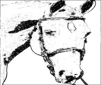 332x280 Online Sketch Photo Effect