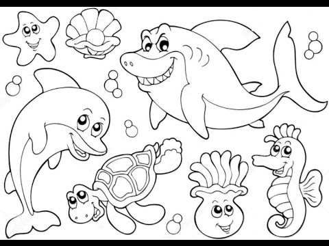 480x360 Ocean Animals Drawings Weekly Preschool To Pretty Draw Pict