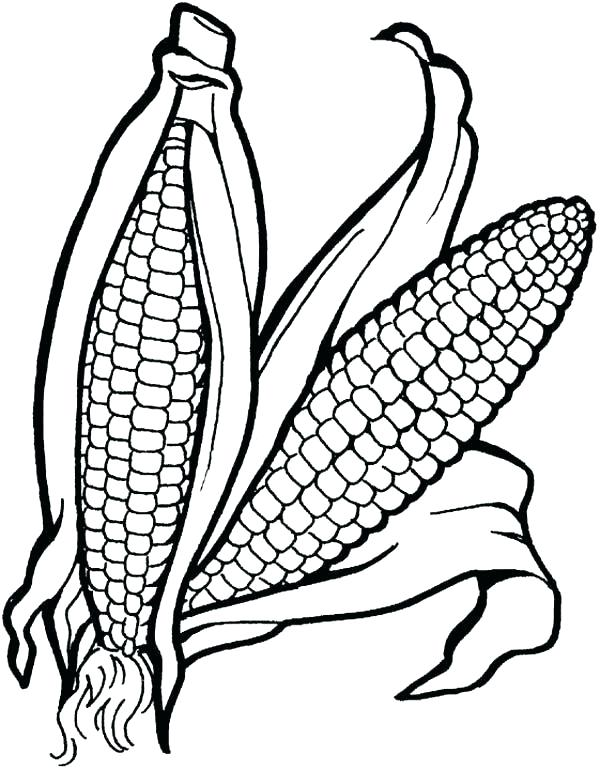 600x770 Top Rated Vegetable Coloring Pages Images Vegetables Drawing