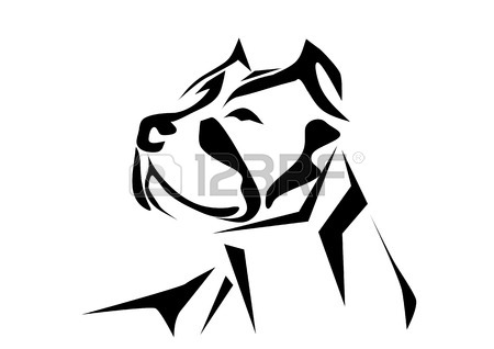 450x318 Pitbull Stock Photos. Royalty Free Business Images