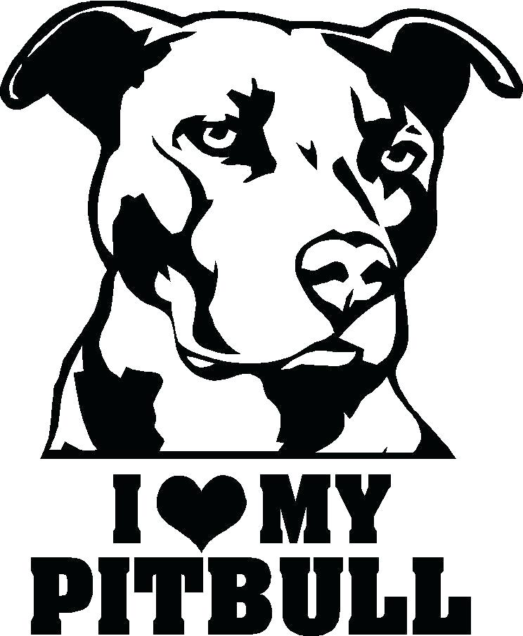Drawing Pictures Of Pitbulls at GetDrawings.com   Free for personal ...