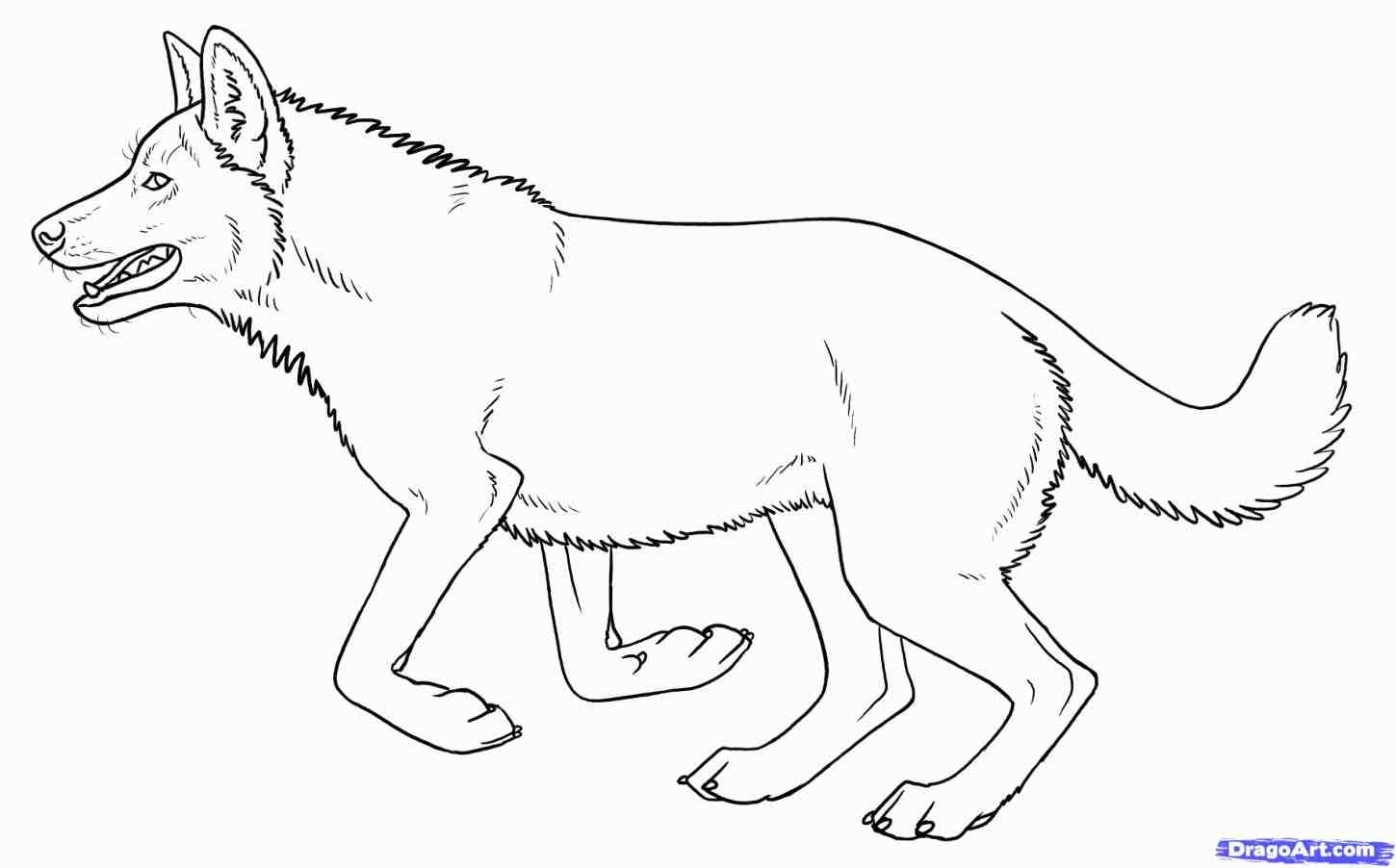 1450x902 How To Draw An American Pitbull Terrier. Apbt And Ambully Pitbulls