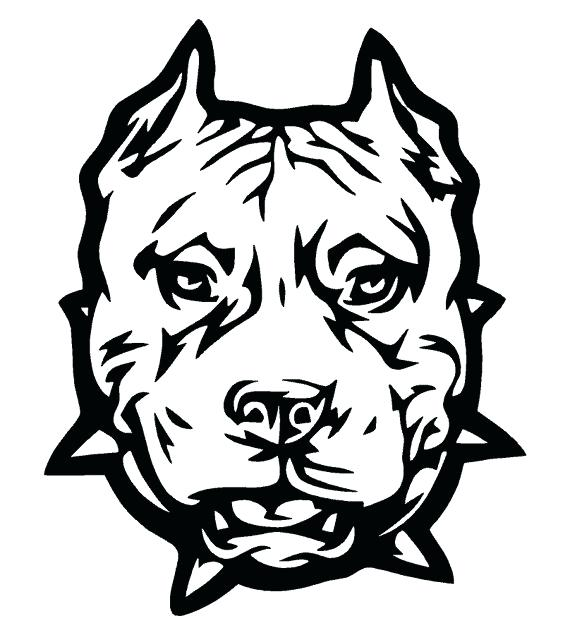 570x635 Coloring Pages Of Pit Bulls Coloring Pages Plus Pin Drawn Pit Bull