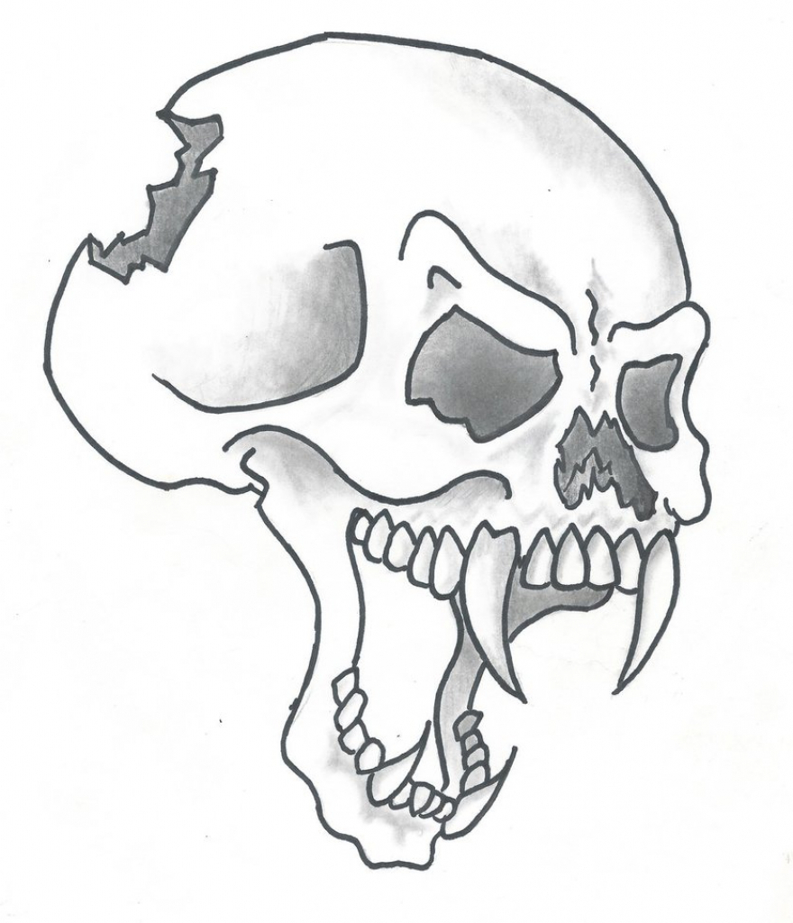 880x1024 Skull Drawing