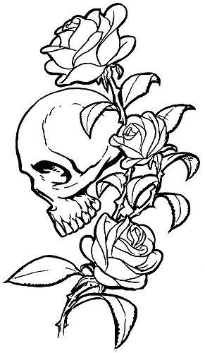291x500 Skulls Roses Tattoo Inspired Drawings With Skulls