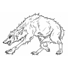 angry arctic wolf coloring pages - photo#23