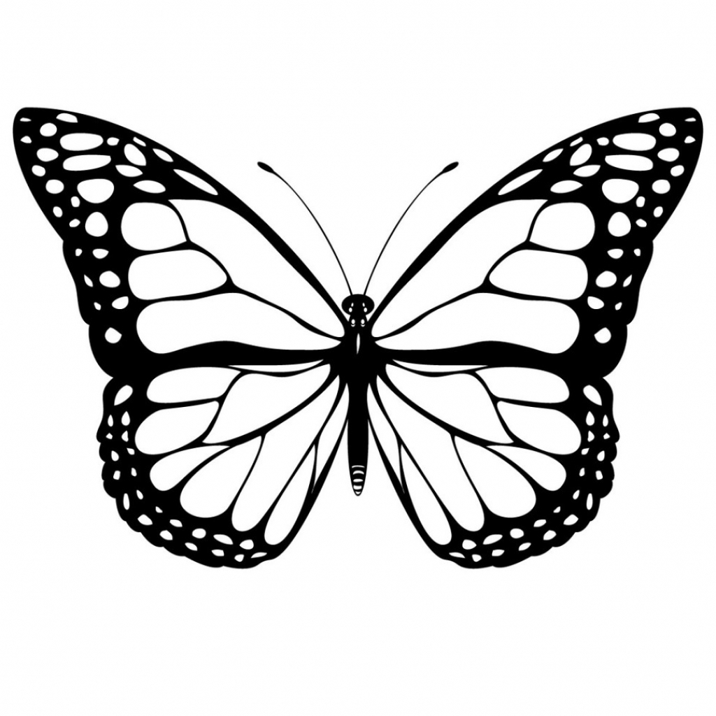 1024x1024 Realistic Butterfly Drawings How To Draw A Realistic Butterfly