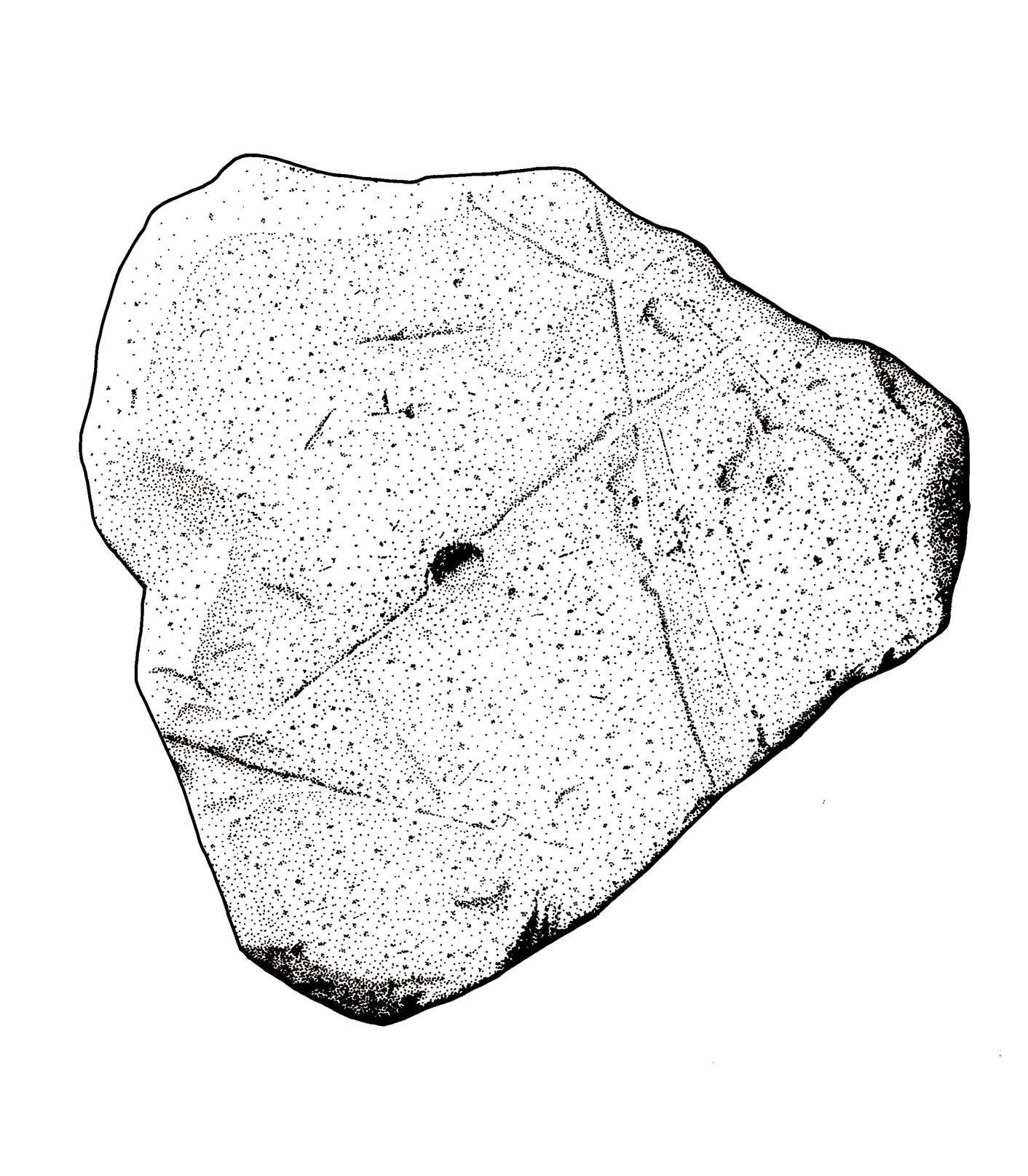 1412x1615 Mark Hoyle Ba Mcifa Graphics Archaeology Group