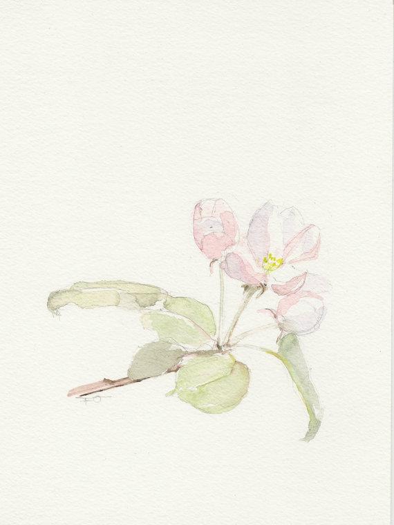 570x760 Spring Watercolor, Apple Blossom, Original Watercolor Painting