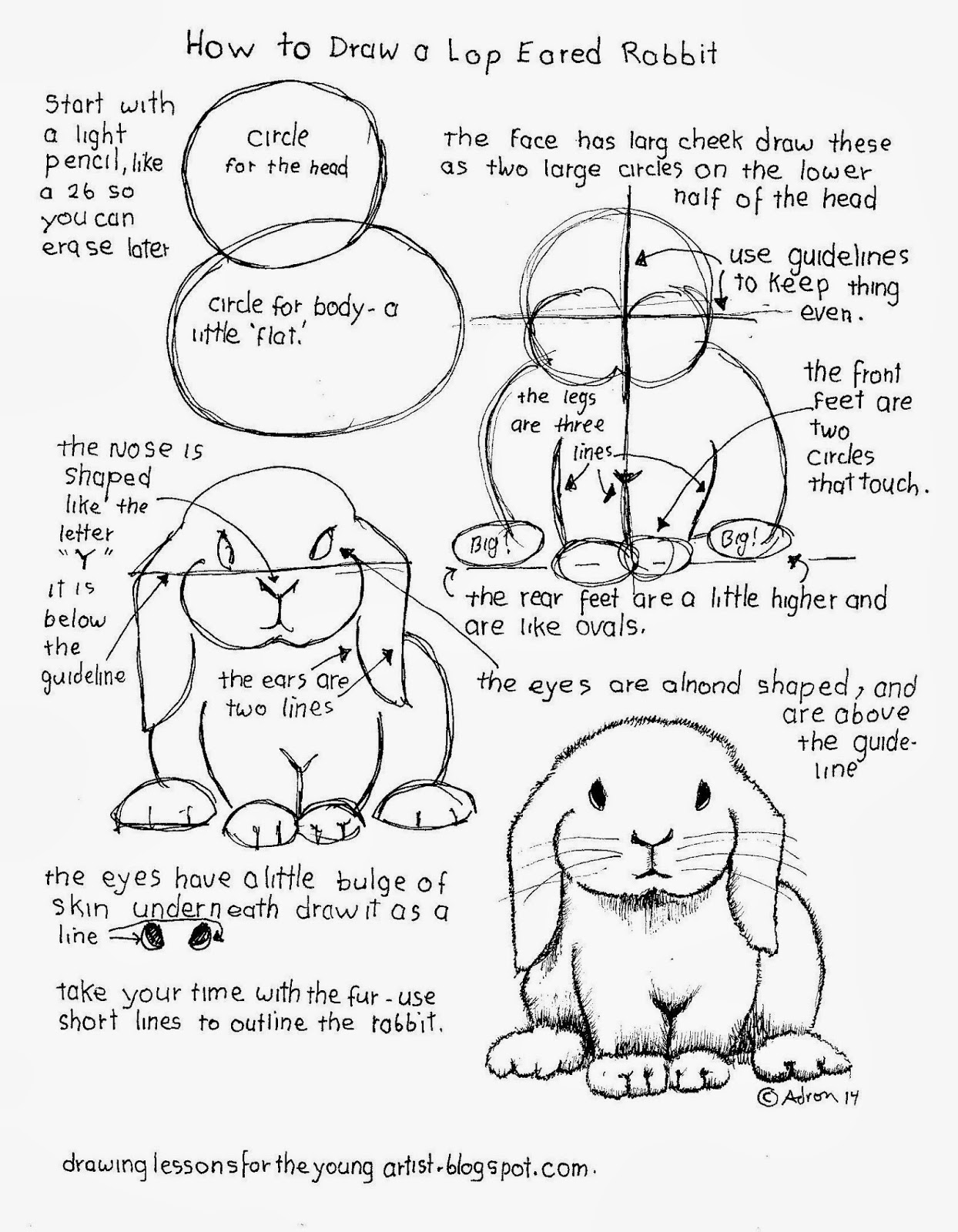 1244x1600 How To Draw Worksheets For The Young Artist How To Draw A Lop