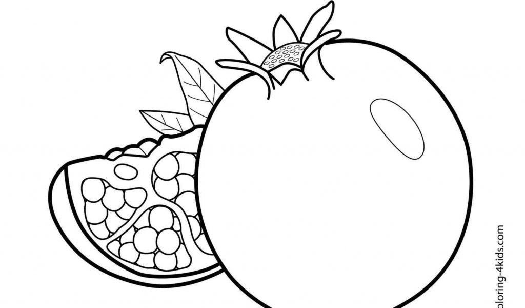 1024x600 The Images Collection Of Freecolorngpagesco Watermelon Drawing