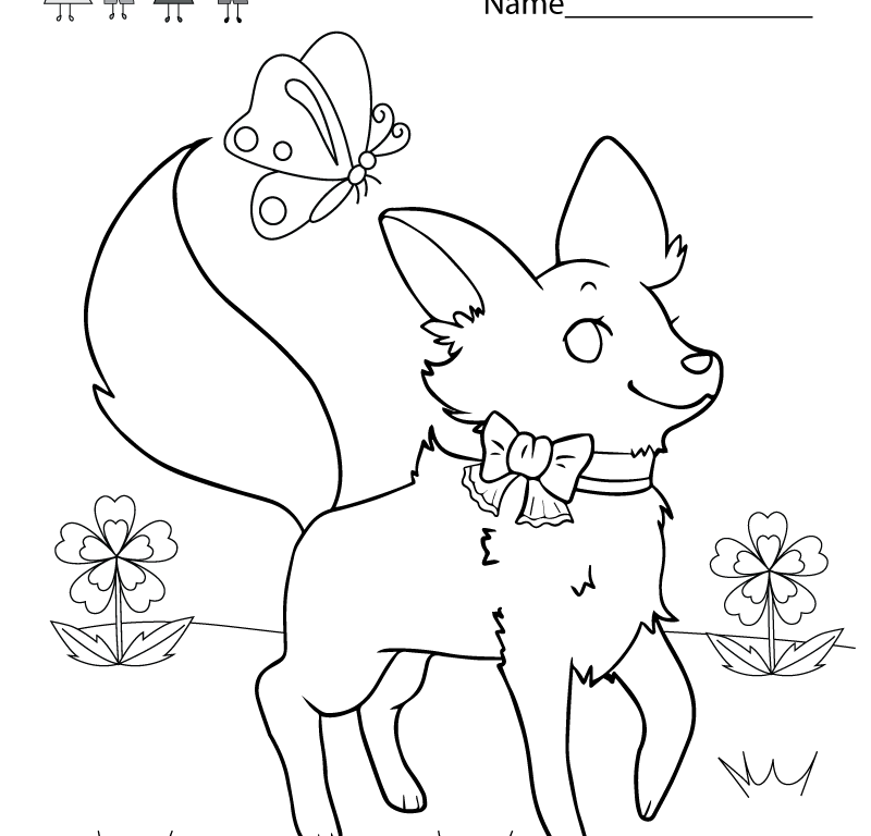 800x768 Color Activity Sheets School Printable For Kindergarten