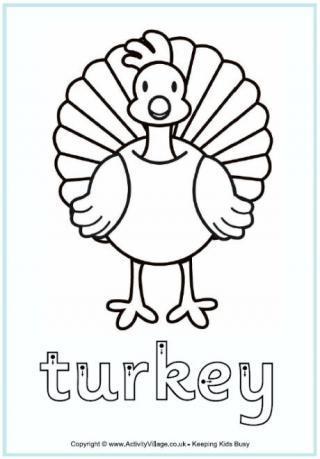 320x459 Turkey Worksheets