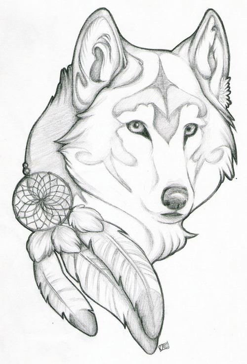 500x735 The Best Dream Catcher Wolf Tattoo Ideas On Dream