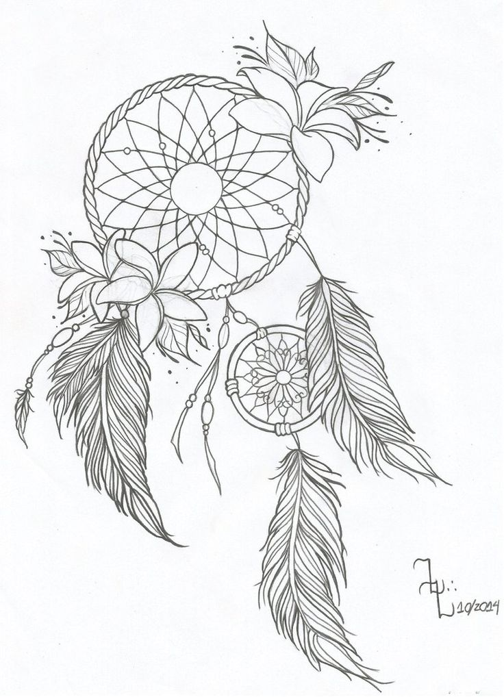 736x1018 Pictures Dream Catchers Drawings,