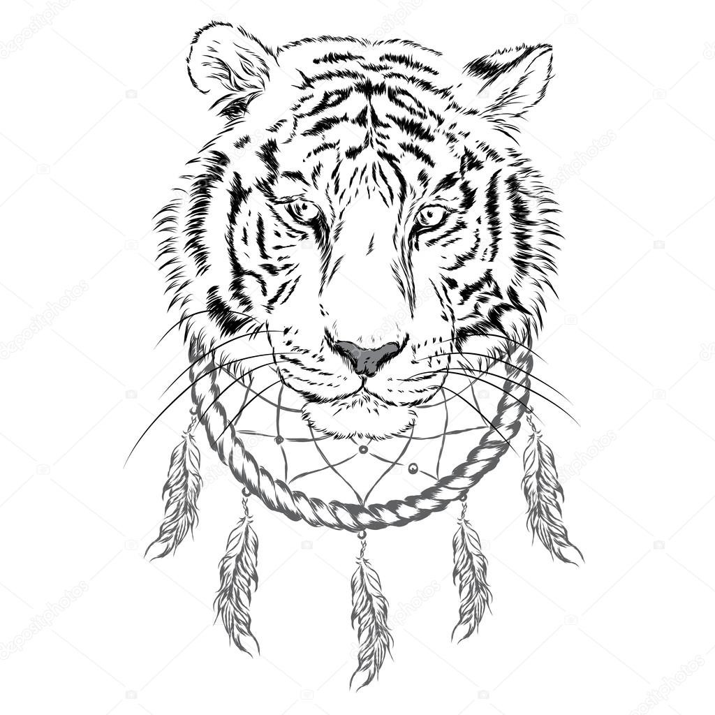 1024x1024 Tiger And Dreamcatcher. Vector Illustration. Stock Vector