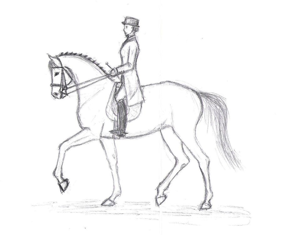 900x749 Another Dressage Horse By Rolf The Brain Cell