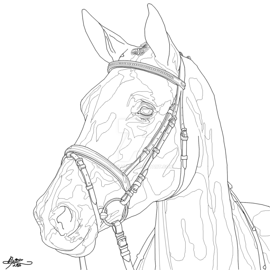 894x894 Dressage Horse Outline By Rachsilver