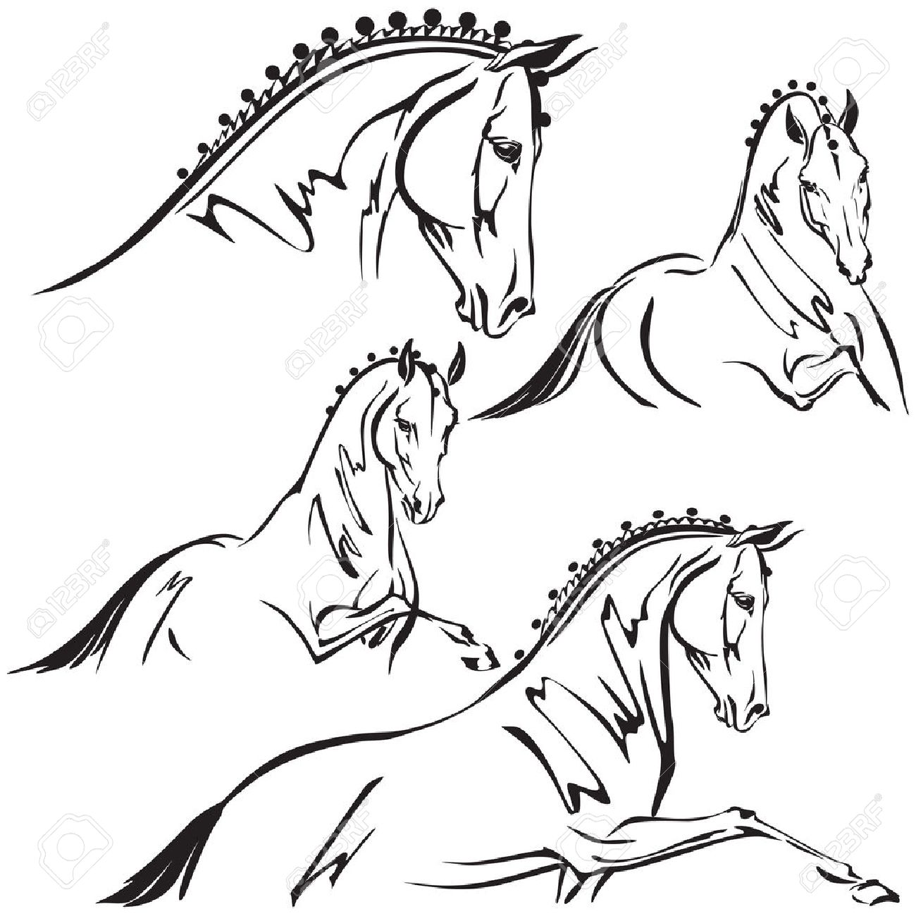 1300x1300 Dressage Horses For Trailer Design Royalty Free Cliparts, Vectors
