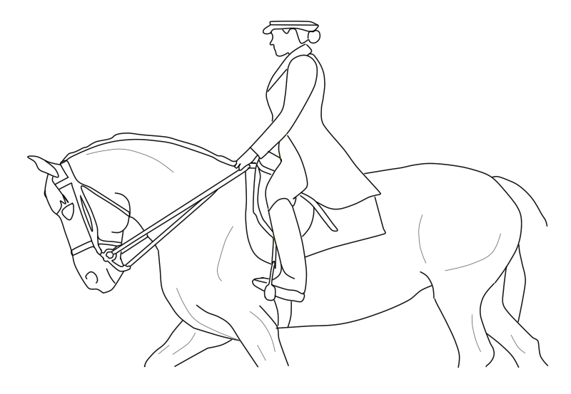 800x553 Dressage Lineart Free By Mtacademy