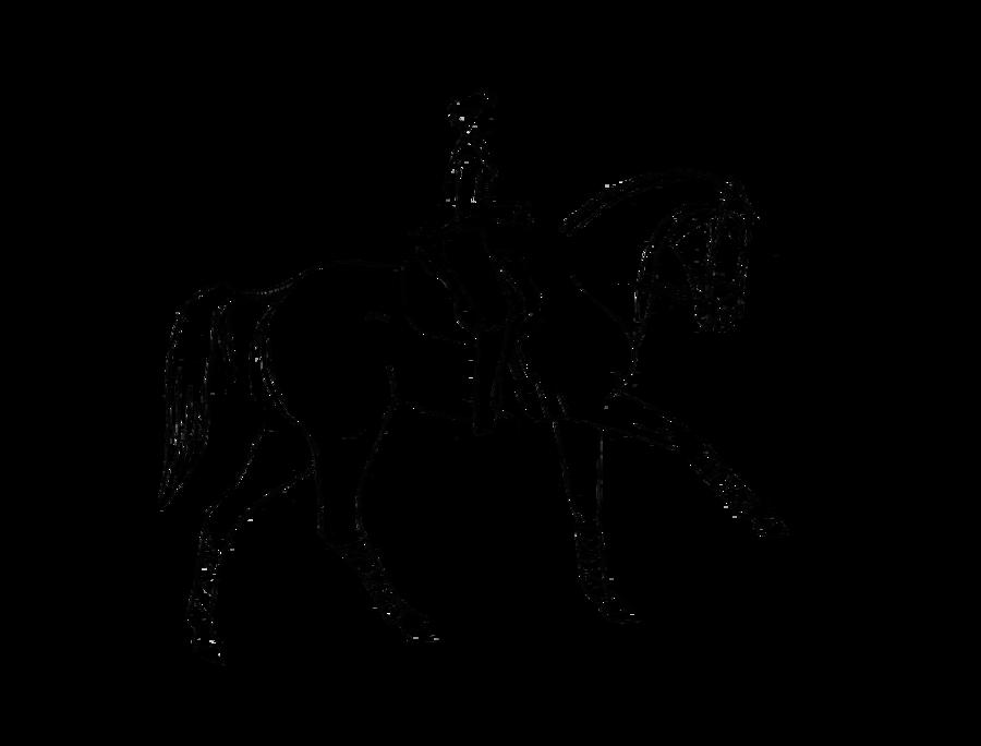 900x684 Dressage With Rider Lineart By Allisondellue