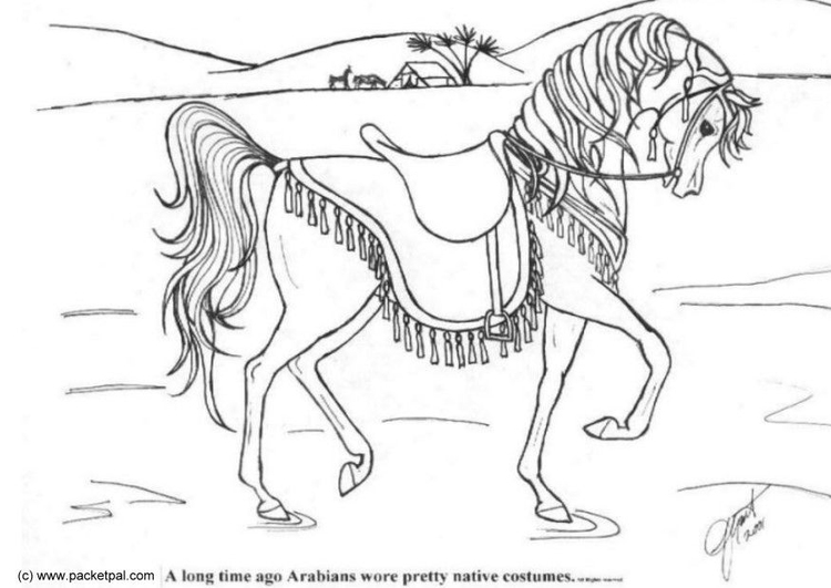 750x531 Coloring Page Dressage