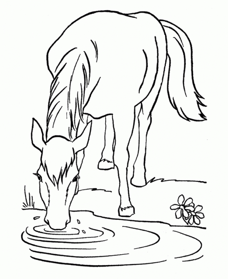 drinking water drawing at getdrawings com free for personal use