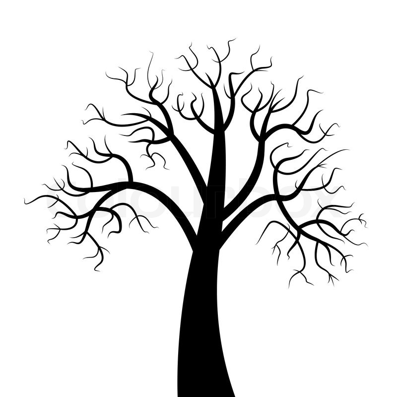 800x800 Dead Trees Have Branches. On A White Background. A Vector