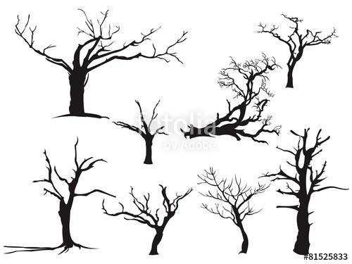 500x375 Dry Tree