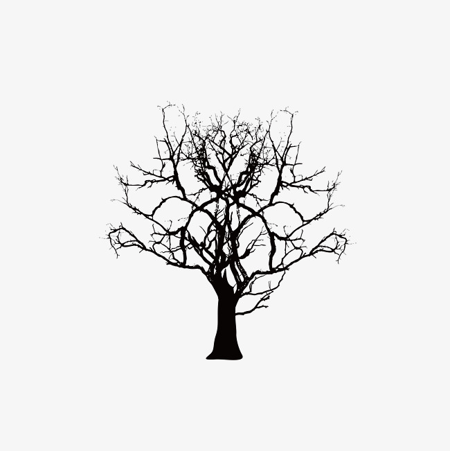 650x651 Dry Tree Top, Vector Diagram, Dead Tree Png And Vector For Free