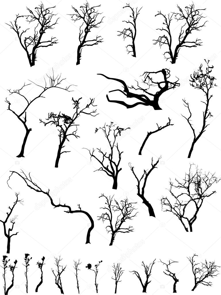 768x1024 Scary Dead Trees Silhouettes Collection Stock Vector Baavli