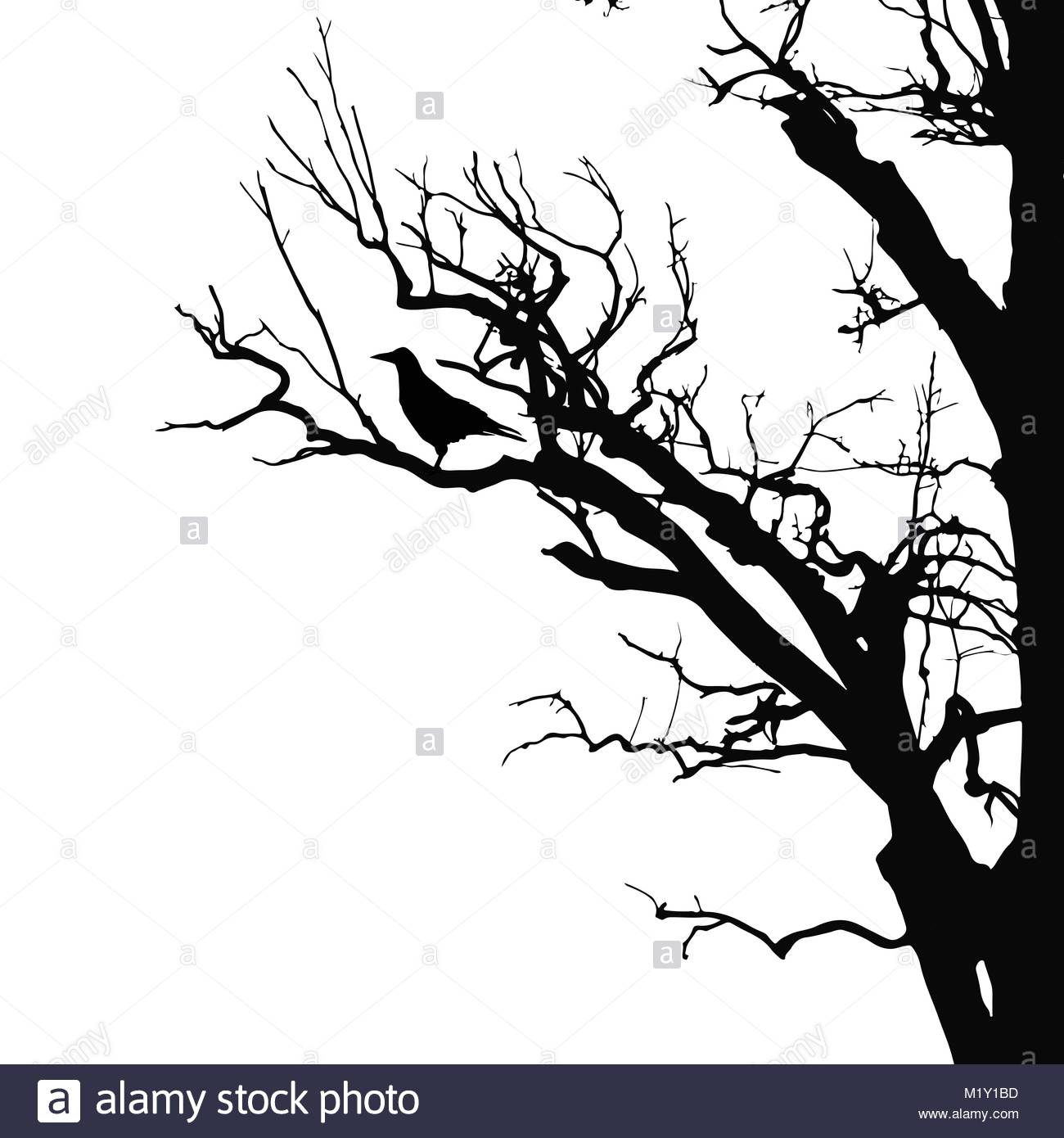1300x1390 Realistic Vector Silhouette Of Sitting Raven On Dry Tree Branch