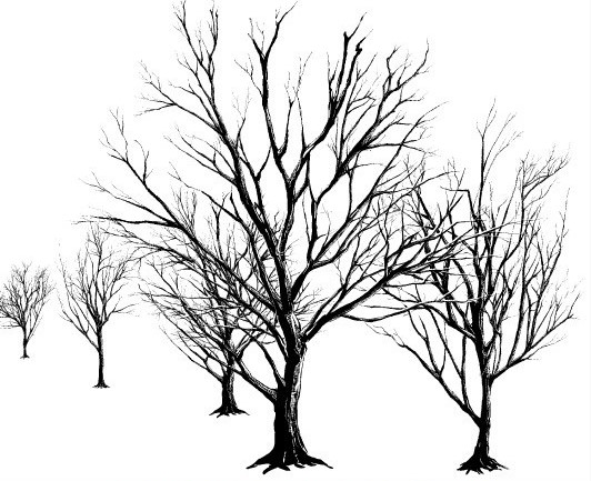 532x433 Dead Tree (Black) Brush Manga Materials