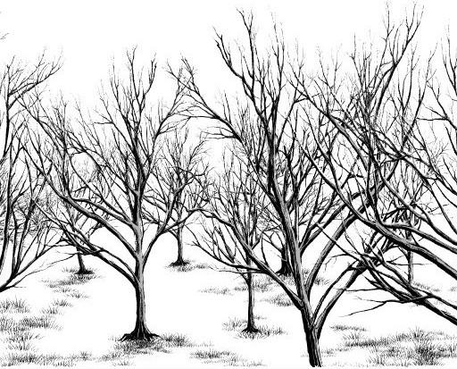 512x413 Dead Tree 3 Type Brushes Set Manga Materials