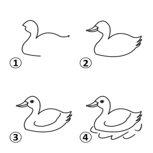 500x500 Draw A Duck For Kids