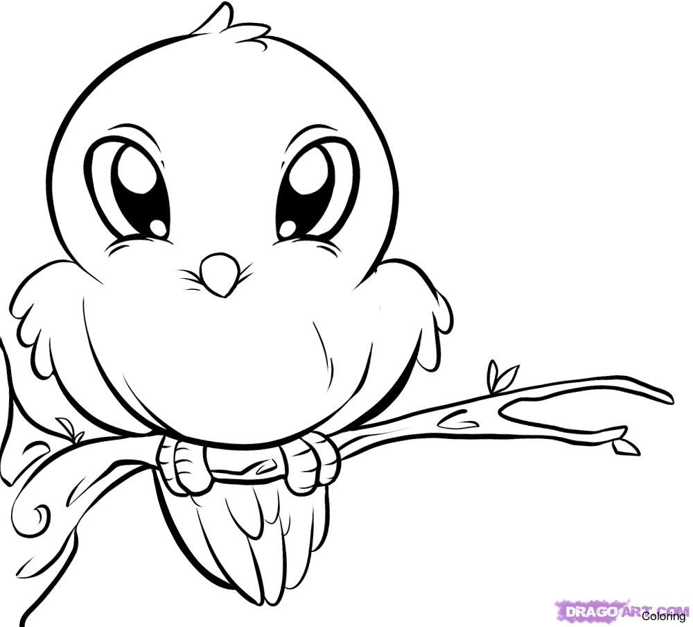 1000x904 How To Draw A Bird For Kids Coloring Cute Cartoon Duck From Dollar