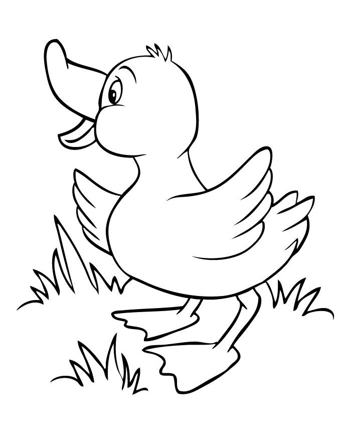 700x867 Duck Template