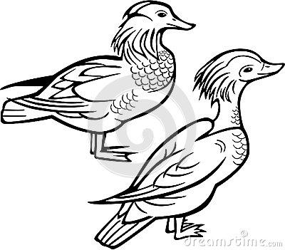 400x351 Mandarin Duck Clipart Duck Outline