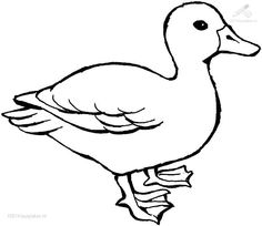 236x204 Duck Animal Coloring Book
