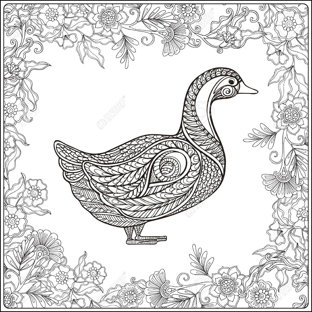 1300x1300 Duck In Floral Frame. Coloring Book For Adult And Older Children