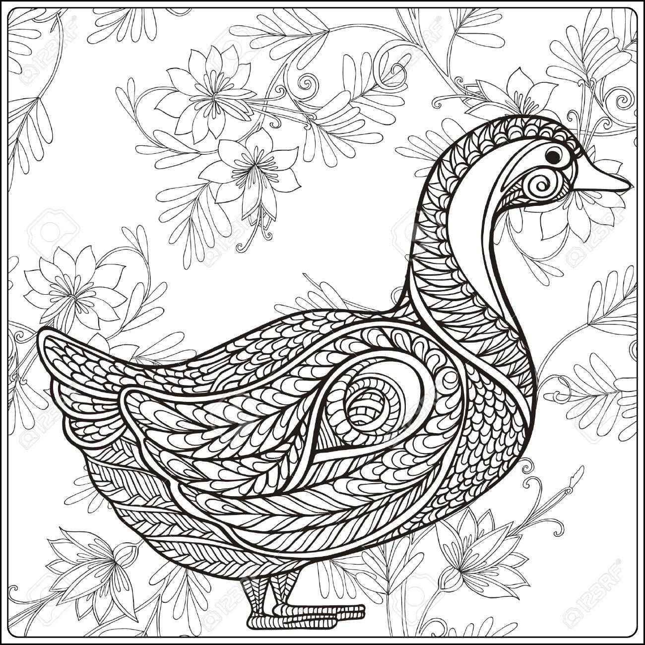 1300x1300 Duck On Floral Background. Coloring Book For Adult And Older