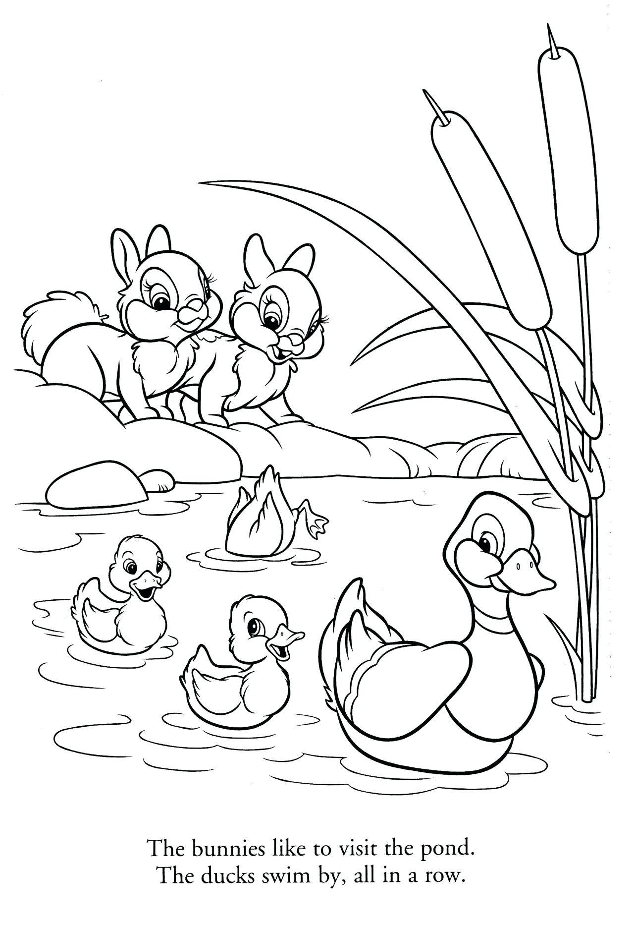 Duck In A Pond Drawing at GetDrawings.com | Free for personal use ...