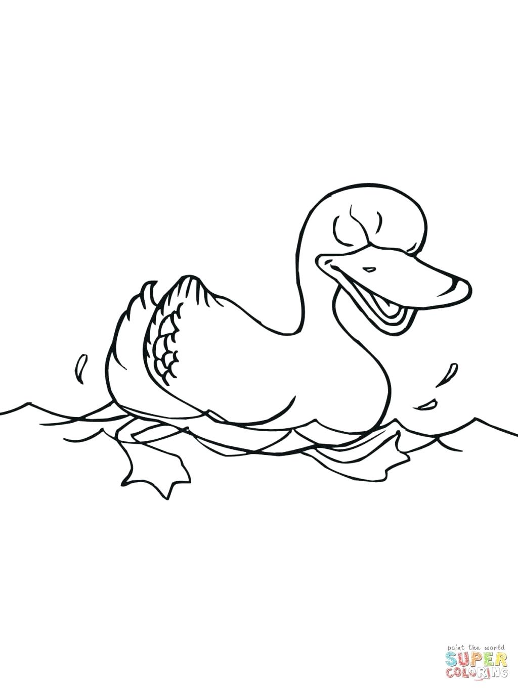 Ducky Drawing at GetDrawings   Free download