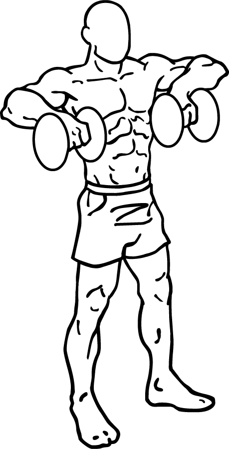 459x900 Dumbbell Raises