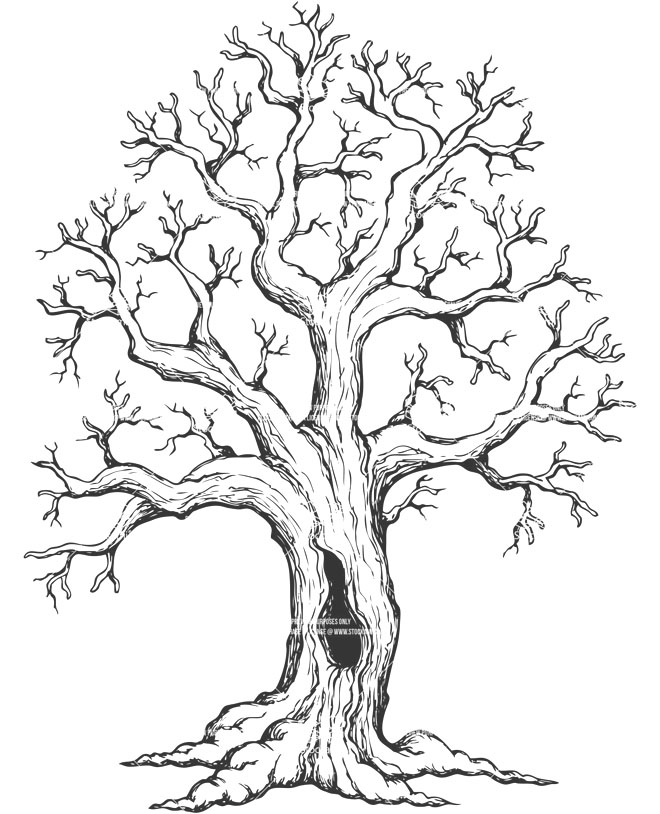 Dying Tree Drawing