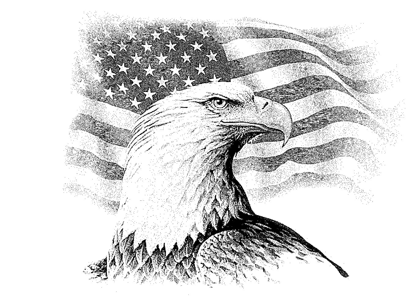 1344x1008 Eagle Drawings We Have Hundred Of Other Images From Which